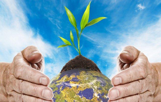 Cuidemos-al-planeta---Ecologia