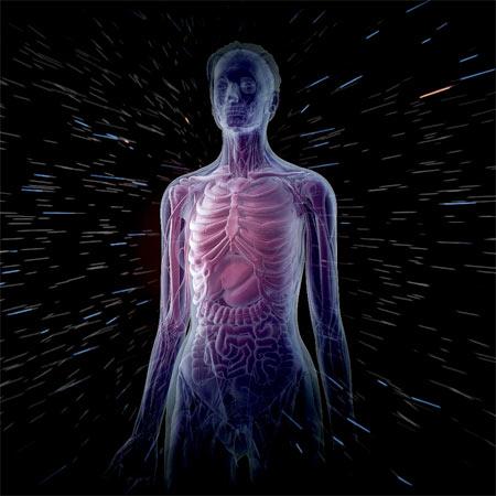 trig-cuerpohumano